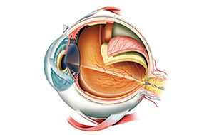 cataract-surgery-calgary-SAEC
